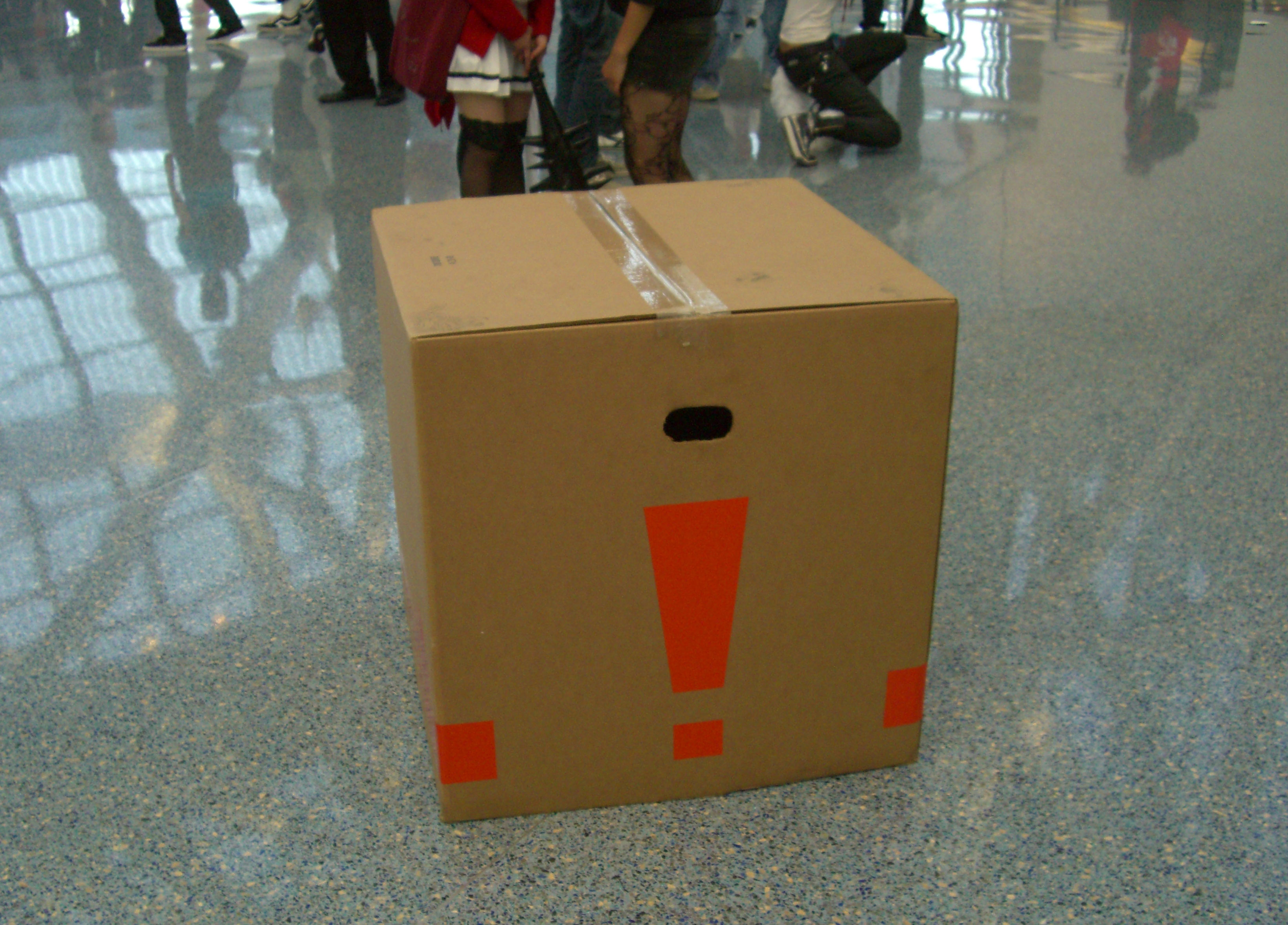 Anime-Expo2010-Snake-Box2.JPG