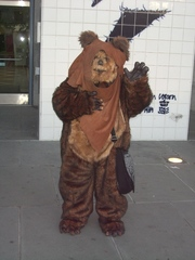 Fanime2010-Star-Wars-Ewok-Costume.JPG